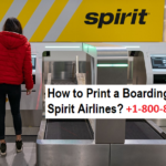 How-to-Print-a-Boarding-Pass-for-Spirit-Airlines