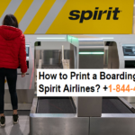 How to Print a Boarding Pass for Spirit Airlines